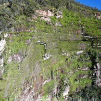 Blue Mountains12
